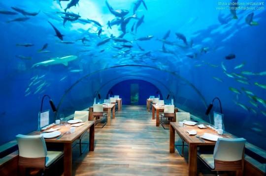 ithaa-undersea-restaurant2